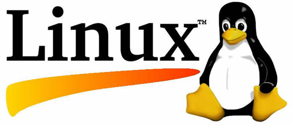 How to Safely Update Linux in AWS EC2 Micro Instance – Using Yum featured image